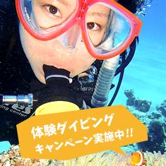 体験ダイビングキャンペーン