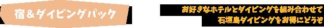 宿&石垣島ダイビングパック・ルートイングランティア石垣